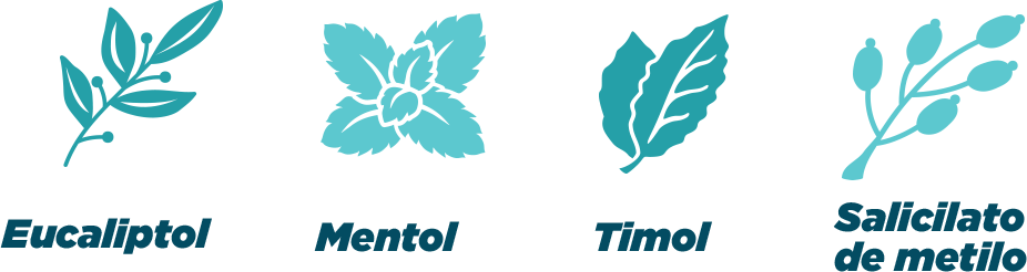 iconos de componentes